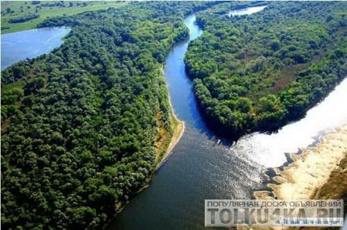 река тростня рыбалка